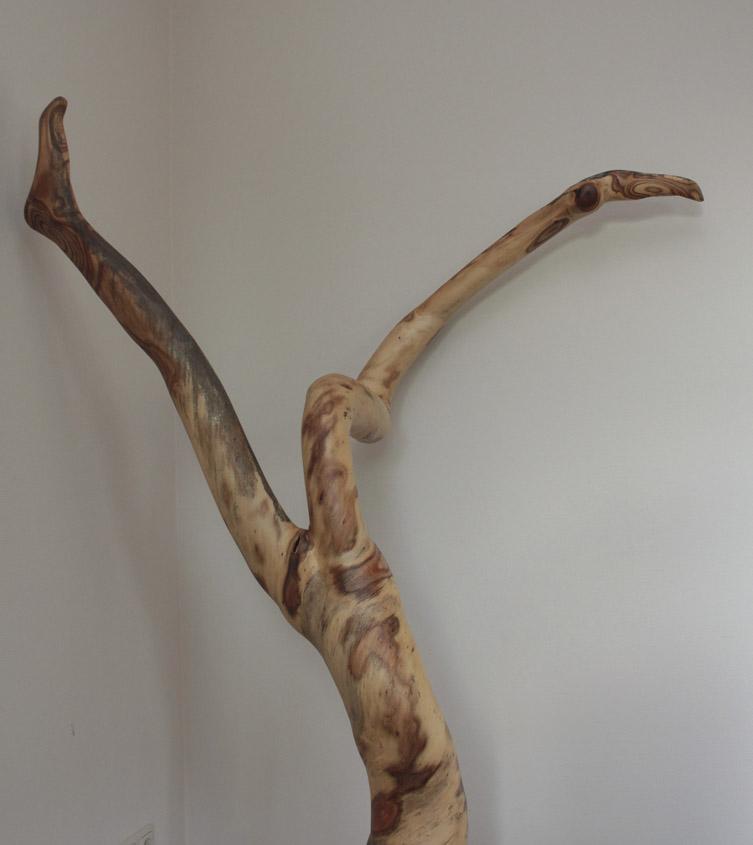 Kronkelbenen