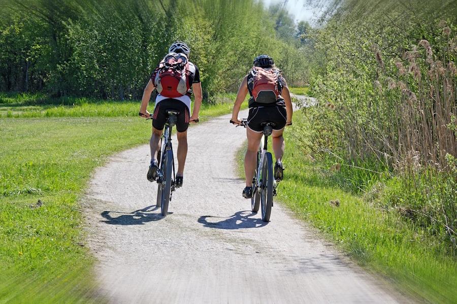 Midweek fietsen Veluwe