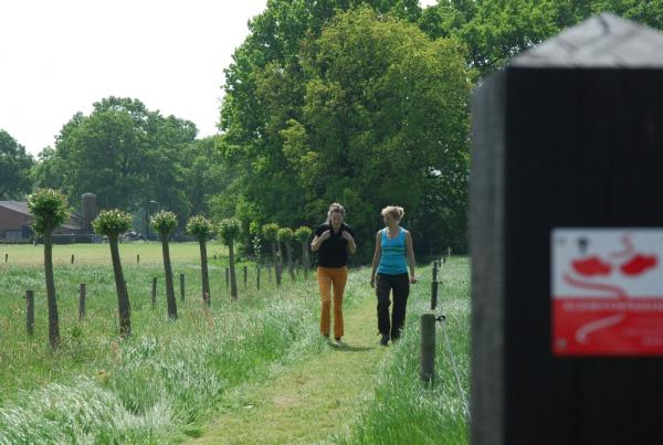 Klompenpaden Veluwe