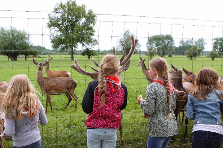 Rondleiding hertenboerderij Nijbroek