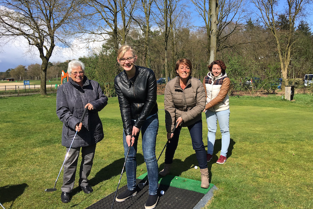 Teambuilding Veluwe, Pitch en Putt