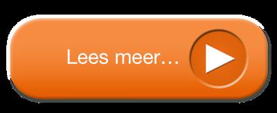 Beeldhouwen op de Veluwe
