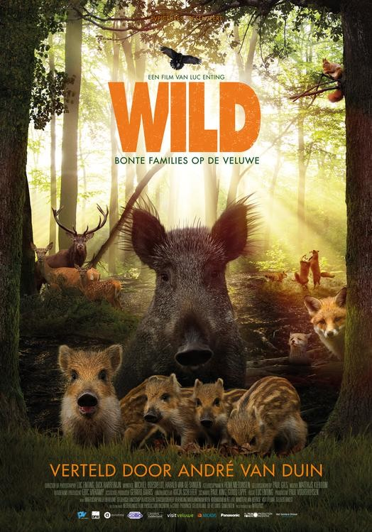 Wild, film over de Veluwe