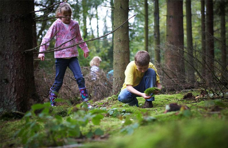 Kinder- natuurwandeling