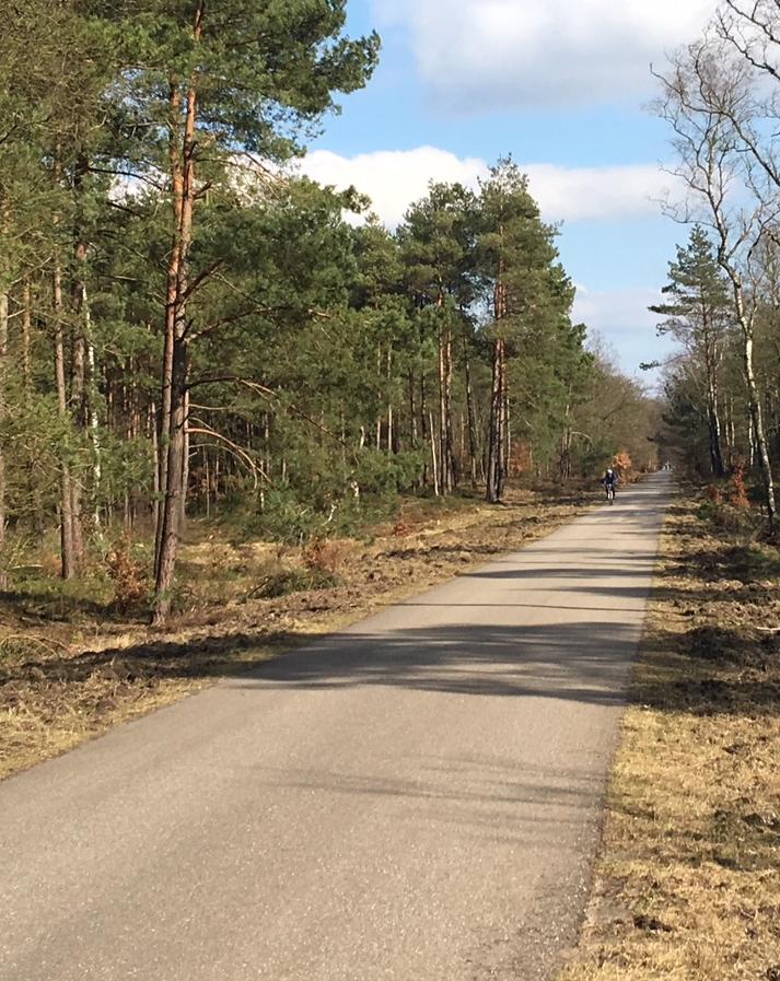 Wandelroute Kroondomein 7 km