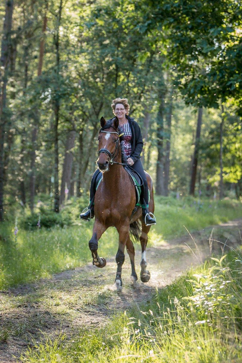Eper Paardenvierdaagse 2018
