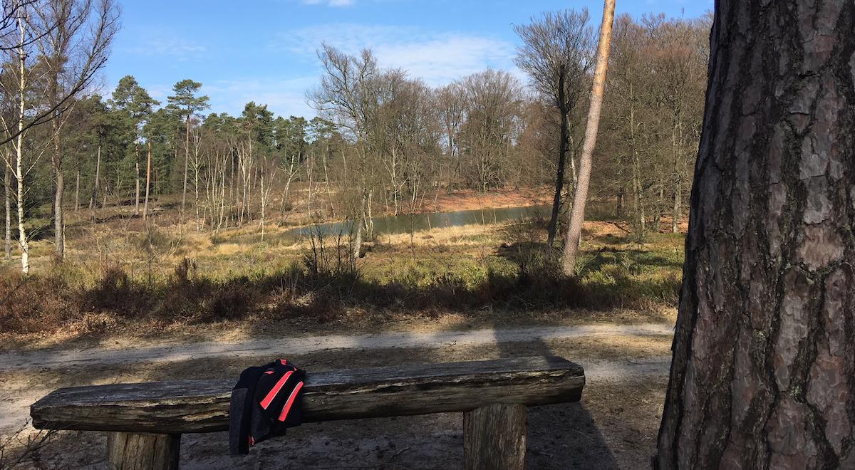 Wandelroute 10 km Cannenburhgergat Vaassen