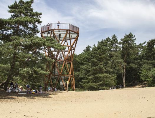 Boswachterspad Veluwe