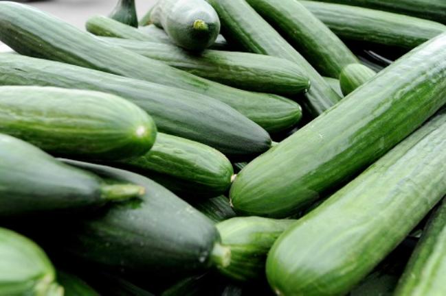 Biologische komkommers