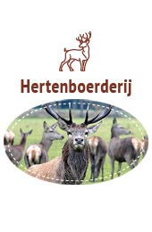 Streekproduct Veluwe: Hertenvlees